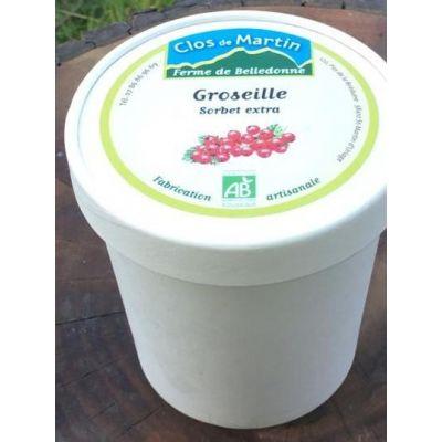 Sorbet artisanal bio Groseille
