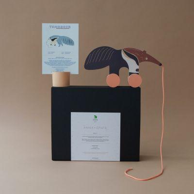 Coffret - Le tamanoir et sa fiche informative illustrée