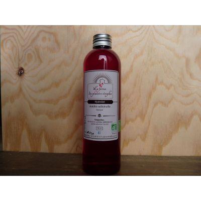 Hydrolat d'Achillée Millefeuille bio - bouchon spray