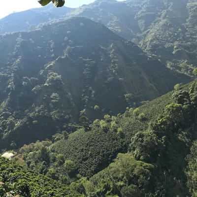 Domaine d'altitude Macao