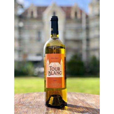 Sables Fauves 2010 -Vin blanc biologique sec fruité - carton de 6 bouteilles de 75 cl