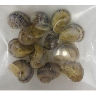 Escargots en coquille beurre espagnol