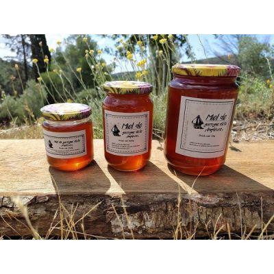 Miel de garrigue d'été (buplèvre) - 250g