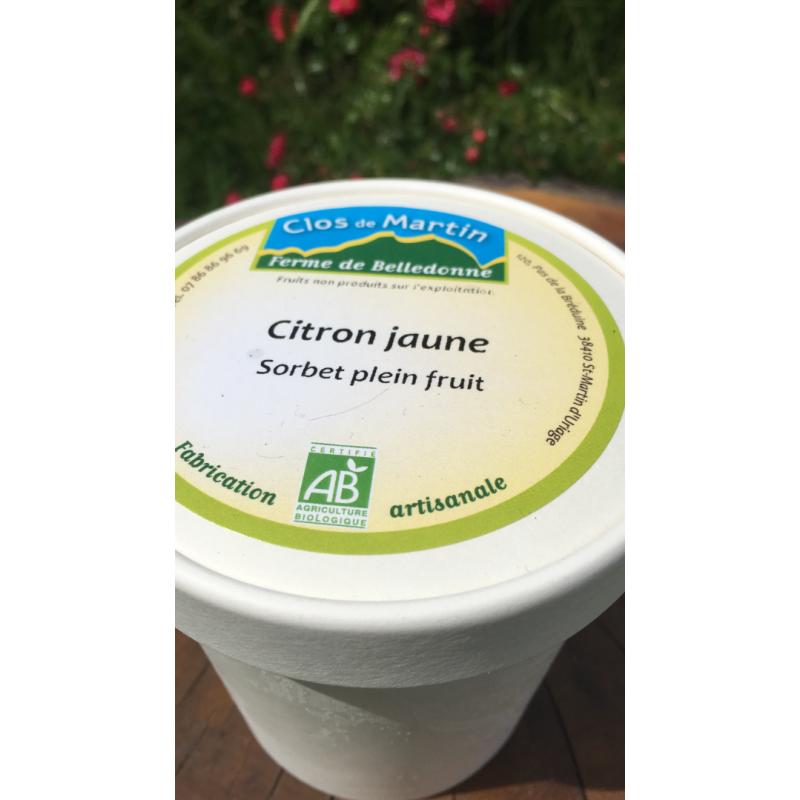 Sorbet artisanal bio Citron