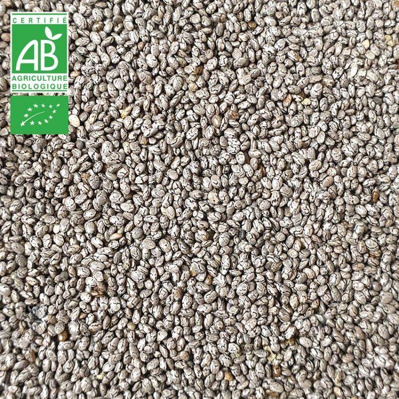 Graines de CHIA BIO FRANCE - 1kg