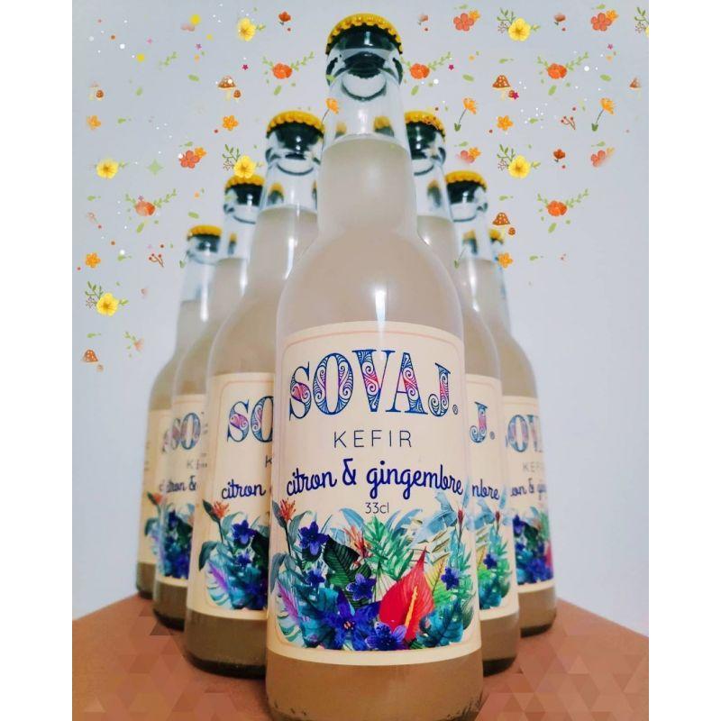 Kéfir & Kombucha 12 bouteilles