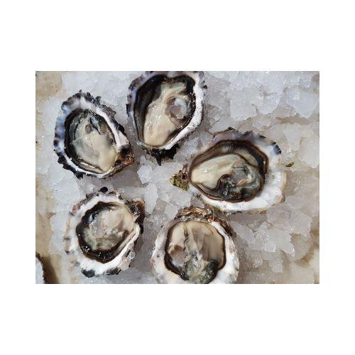 Huîtres de Camargue N°3 / 12 pièces - Agriculture Biologique