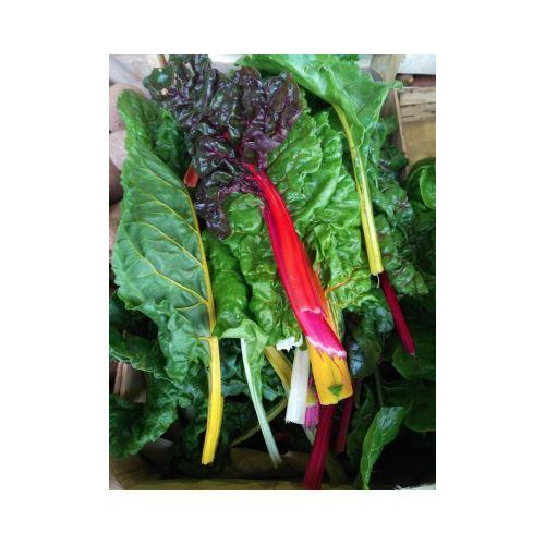 Blettes multicolores 1 kg