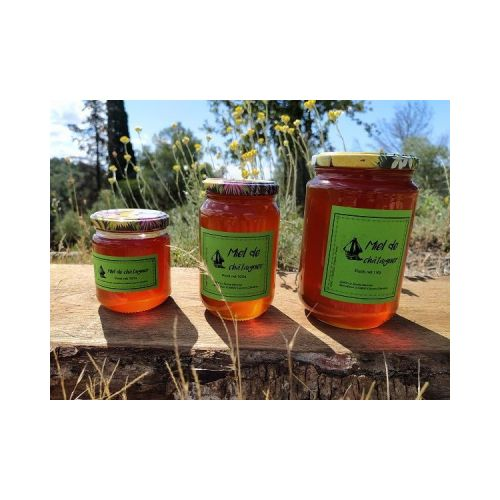 Miel de châtaignier - 1kg - Liquide