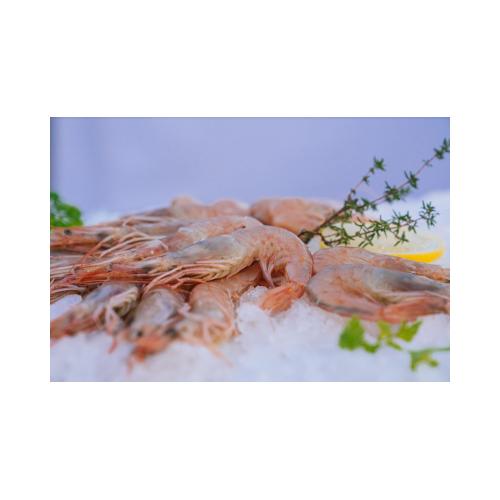 Crevettes Sauvages de Méditerranée - 500g