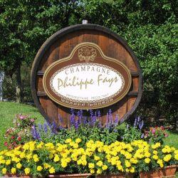 logo de Champagne Philippe FAYS