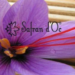 logo de Safran d'Oc