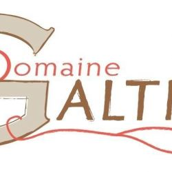 logo de Domaine GALTIER