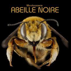 logo de Microbrasserie ABEILLE NOIRE