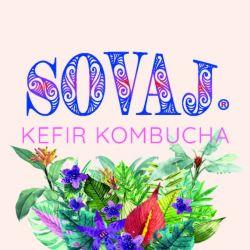 logo de SOVAJ