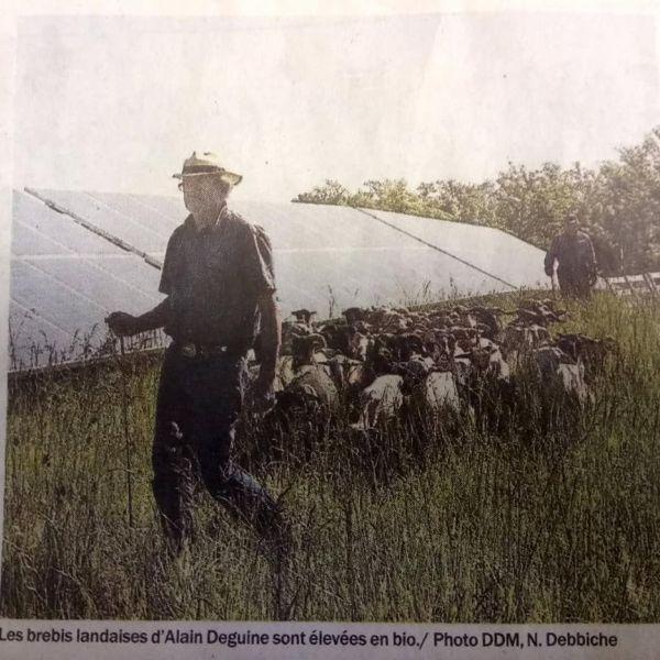 photo de La l'Uby des Moutons
